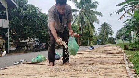 Curah Hujan Tinggi, Nelayan Kelong Bilis Desa Kuala Raya Kesulitan Keringkan Hasil Laut Mereka